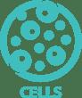 Key elements_Cells Turquoise (EN)